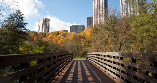 Bridge located along the Lower Don Trail. Image: City of Toronto