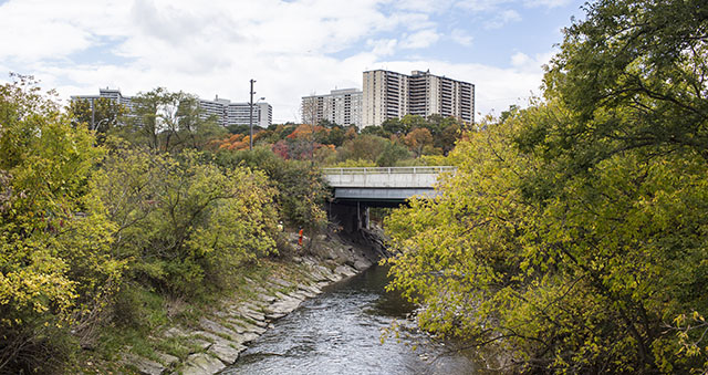 The Don River.